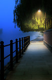 Misty river path