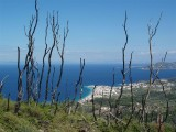 Samos 2008