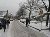 Groene Hartpad Wandeling Delft - Rodenrijs 4-5 december 2010