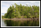 Sun Comes Out in the BWCA