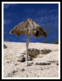 Cancun - Where Ocean and Jungle Meet