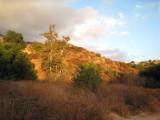 Eaton Canyon Hike - 32