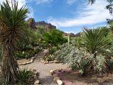 Around Arizona