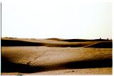 The Magic Carpet, Waheba Sands; Oman 2008