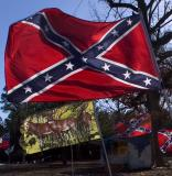 Arkansas Battle Flag
