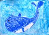 whale, Kane, age:5