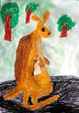 kangaroo, Jamie Wu, age:5.5