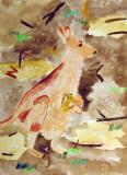 kangaroo, Nancy Yin, age:6.5