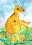 kangaroo, Henry, age:4.5