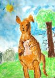 kangaroo, William Tess, age:6