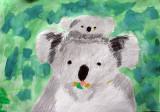koala, Justin Lee, age:9