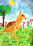 kangaroo, Annie, age:5.5