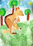 kangaroo, Justin, age:5.5