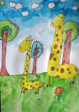 giraffe, Elyssa, age:5.5