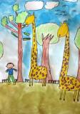giraffe, Lejie, age:5.5