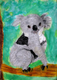 koala, Jonathan, age:9