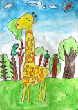 giraffe, David, age:5