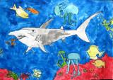 shark, Yuchen, age:9