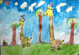 giraffe, Yudian, age:5
