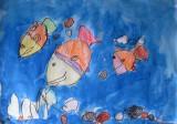 fish, Amber, age:3.5