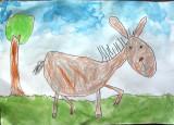 donkey, Thomas, age:5
