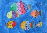 fish, Ashani, age:6
