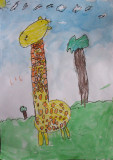 giraffe, Amber, age:4