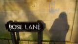 Rose Lane