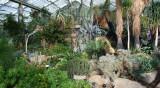 Cactus house Kew