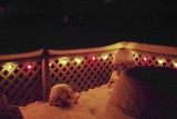 The snow catches the colors of the year round patio lights.