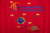 H1--Underwater St Maarten, title