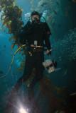 monterey_bay_aquarium