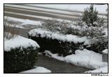 5 december 2010.jpg