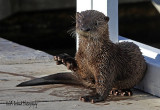 ....I otter be on my way.