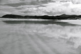 Squeaky Beach Sands