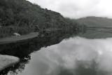 Tidal River Estuary BW