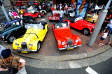 Morgans from above