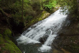 May 23 - Gorges State Park - Paw Paw Falls