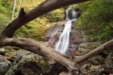 Dill Falls 1