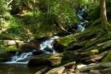 Roaring Fork Falls 1