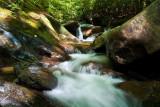Bearwallow Creek - Nantahala NF 2