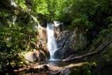 Bearwallow Creek - Nantahala NF 4
