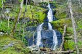 Fern Branch Falls 2