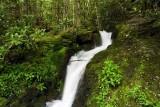 Huskey Branch Cascades 1