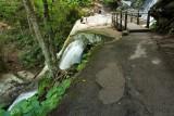 Laurel Falls 1