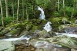 Mouse Creek Falls 2