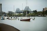 114-365 120930 F2 Random Brisbane River Walk 014_1 sm.jpg