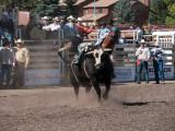 Cochrane Rodeo Final