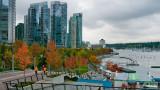 20101026_Vancouver_0113.jpg
