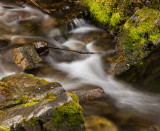 20120922_Cat Creek Falls_1395.jpg
